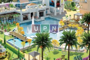 Spring Apartment Homes UPN
